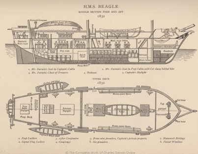 King's sketch of the Beagle