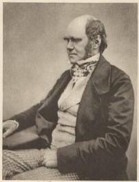 Charles Darwin c. 1851