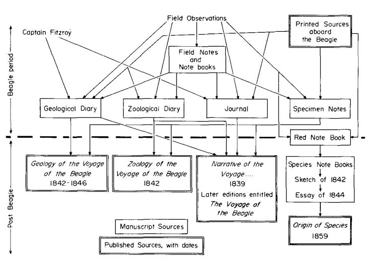 armstrong patrick charles darwin in western a  figure 3 diagram showing relationship between the various beagle darwin sources showing the flow of ideas the upper part of the diagram shows the sources