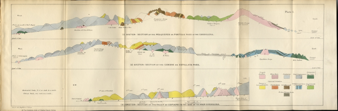 Darwin, C  R  1846  Geological observations on South America