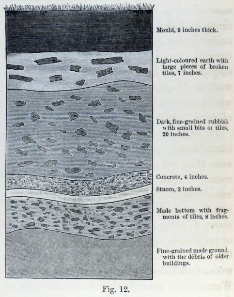 the formation of vegetable mould darwin pdf
