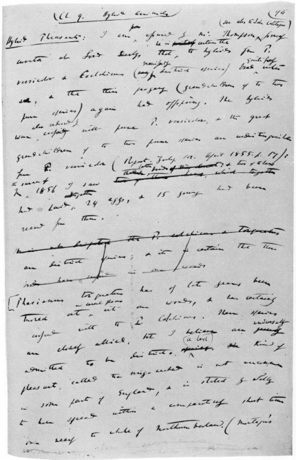 In This Sample Folio Of The Manuscript A Sentence Middle Was Cancelled Before Completion And Reworded Immediately Thereafter