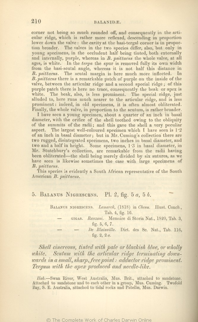 Darwin C R 1854 A Monograph On The Sub Class Cirripedia