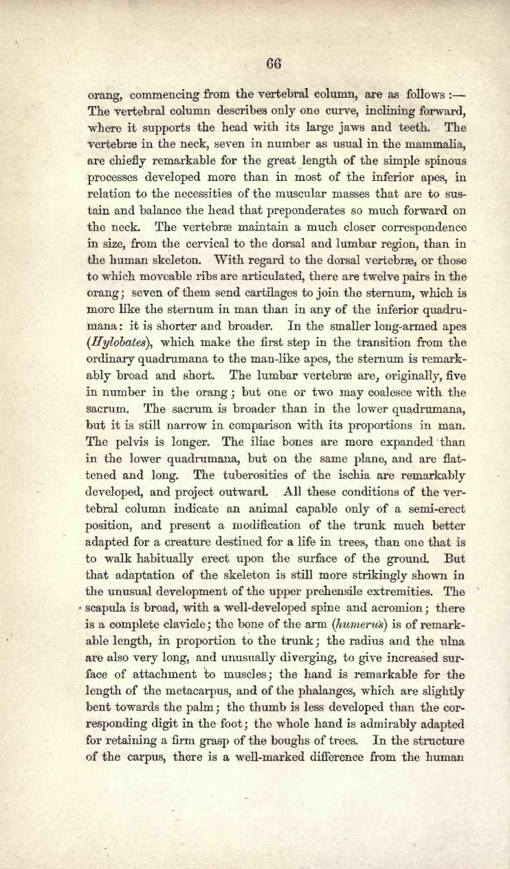 Owen, Richard  1859  On the classification and geographical
