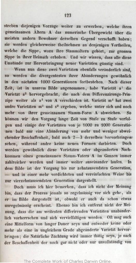 Ulla Popken Katalog Bestellen