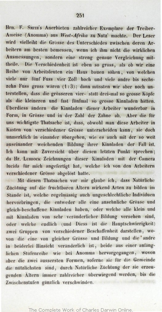 "Blechschild /""Free Beer tomorrow/"" Bier Flasche Kneipe Bar Pub Diner 31x10 cm Neu"