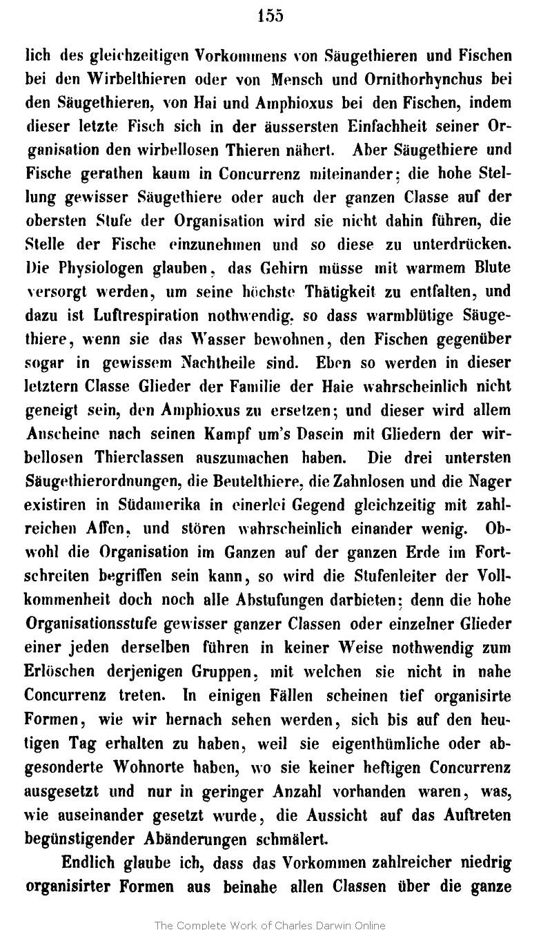 Antike Spitze Für Ce Sehr Groß Fliegender Geblümt Nr 169 GläNzende OberfläChe Antiquitäten & Kunst