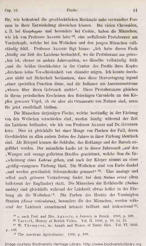 Darwin C R 1871 Die Abstammung Des Menschen Und Die