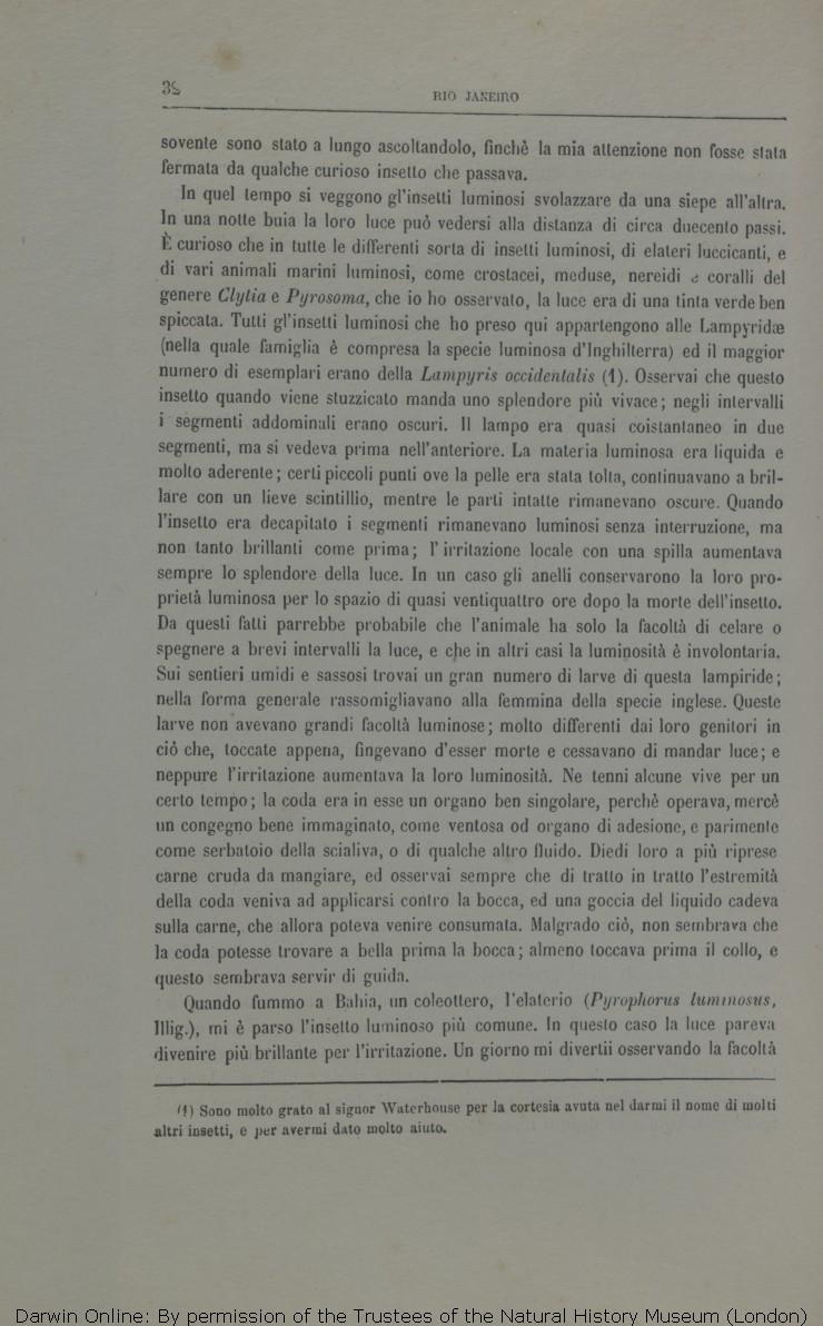 67c9f70db4 Viaggio di un naturalista intorno al mondo. Translated by Michele Lessona.  Turin: Unione.