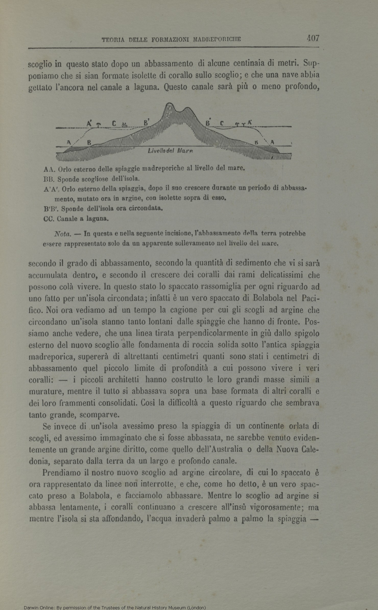 Viaggio di un naturalista intorno al mondo. Translated by Michele Lessona.  Turin  Unione. eadbc6b88330