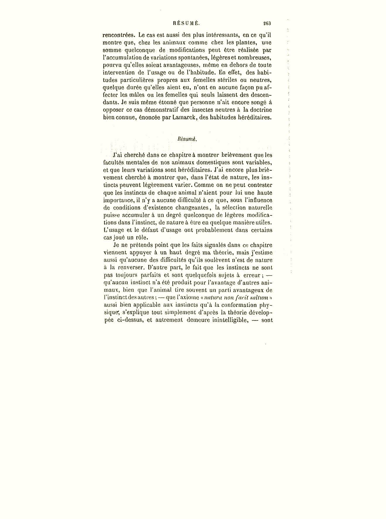 2 x A4 Résumé Lézard à Motifs Papier dorsal NEUF