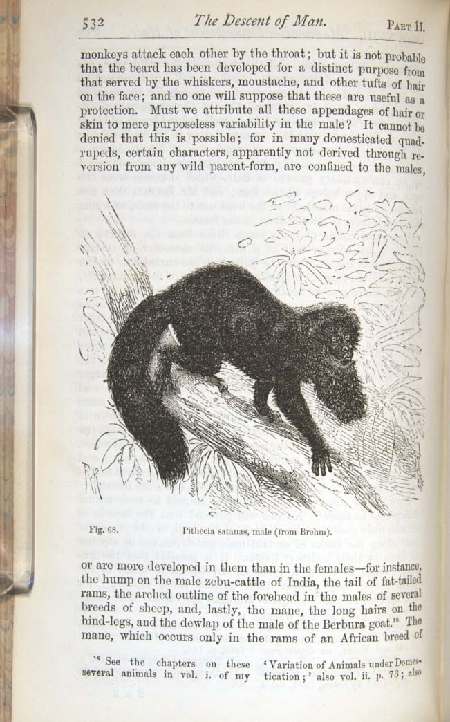 Darwin, C  R  1874  The descent of man, and selection in