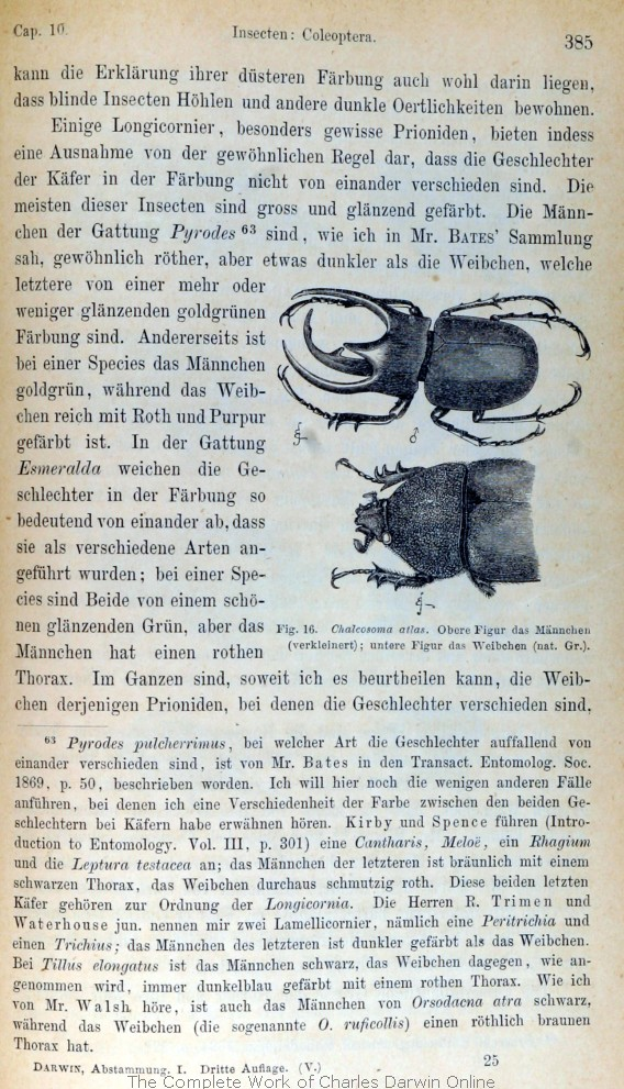 Darwin C R 1875 Die Abstammung Des Menschen Und Die