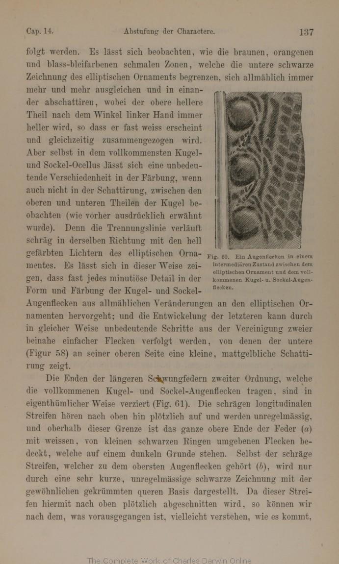 Darwin, C. R. 1875. Die Abstammung des Menschen und die geschlechtliche  Zuchtwahl. Translated by J. V. Carus. 3d edition. Stuttgart: Schweizerbart.