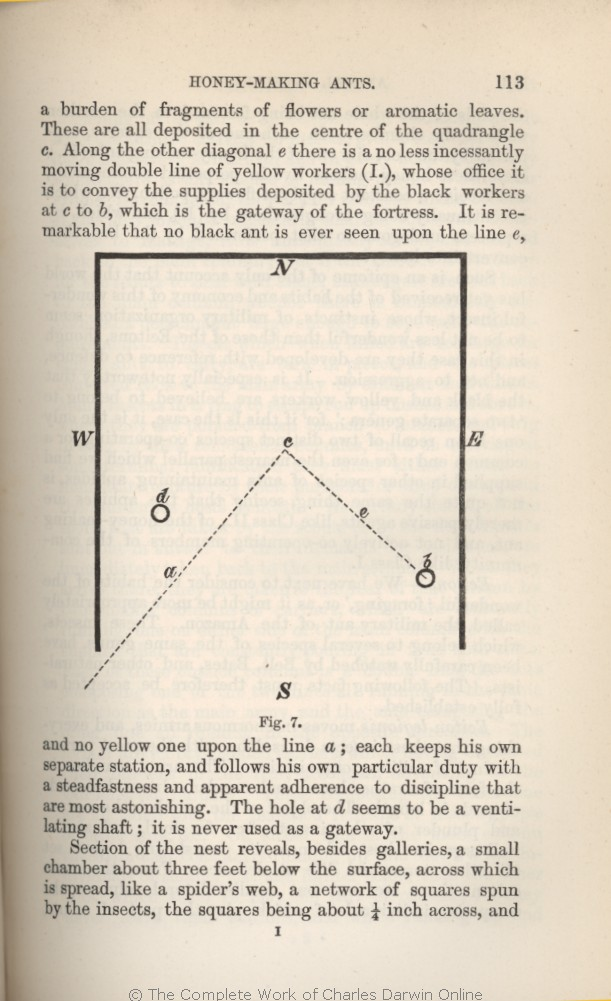 arwin, c  r  1882  [extracts from darwin's notes] in g  j  romanes  animal  intelligence  london: kegan paul trench & co