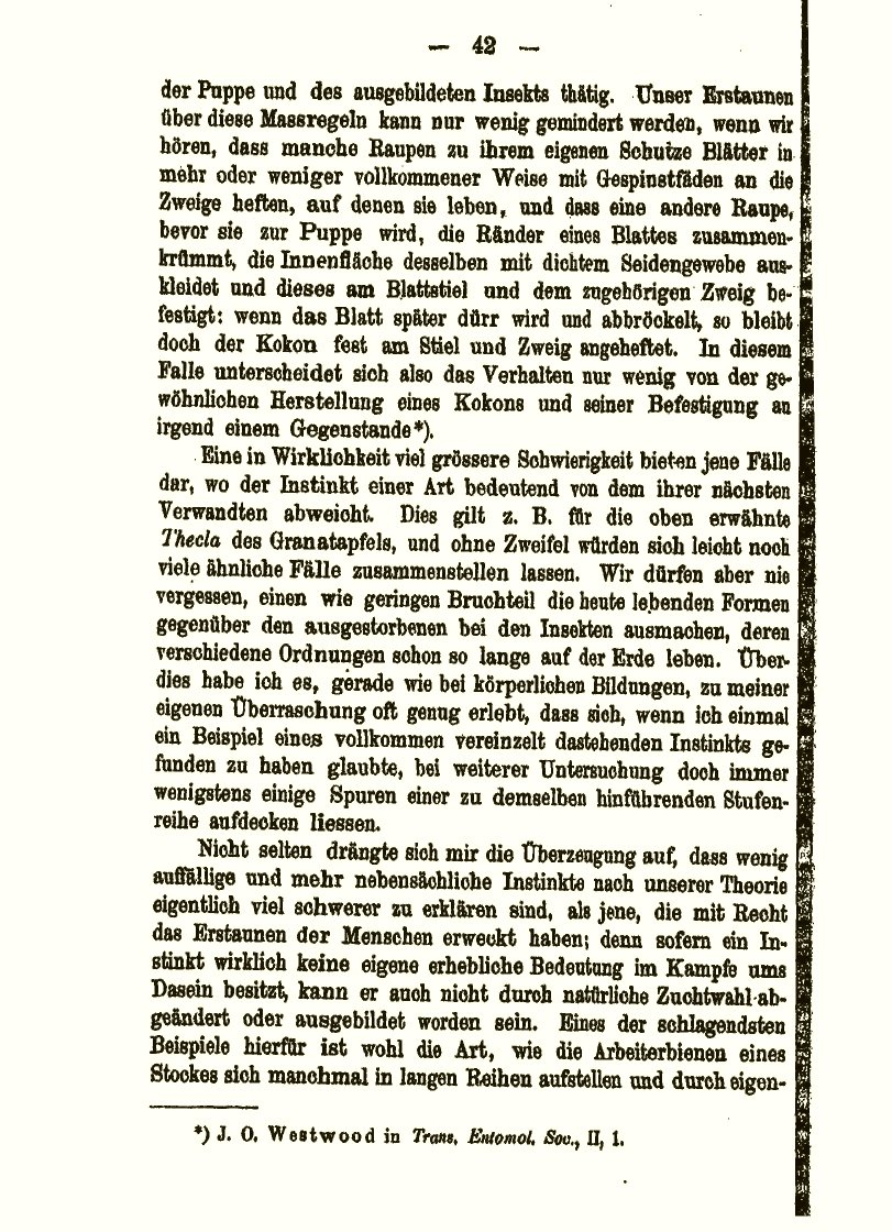 Darwin, C. R. 1885 6. Gesammelte Kleinere Schriften Von Charles Darwin. Ein  Supplement Zu Seinen Grosseren Werken. Translated By E. Krause.