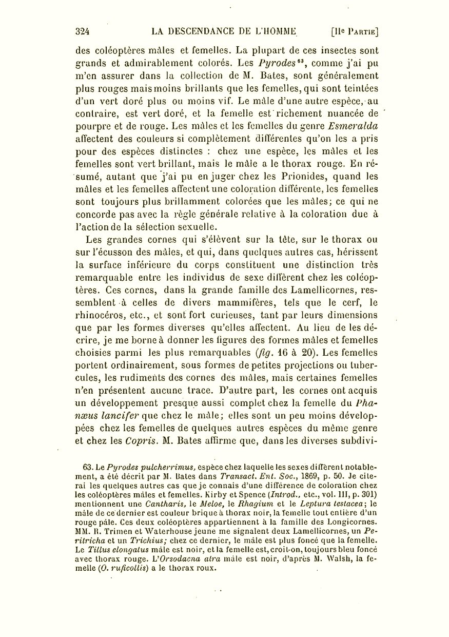 Descendance De L'homme Sélection DarwinCR1891La Et n0vm8Nw