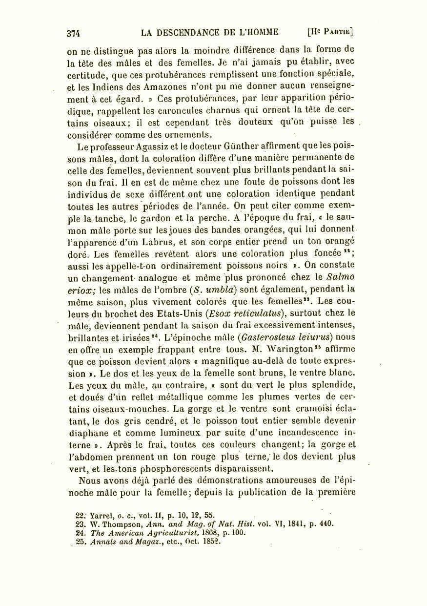 Femmes Haut Noir Motif Floral Asymétrique Romain D/'Origine Neuf Tailles 10 12 14 18
