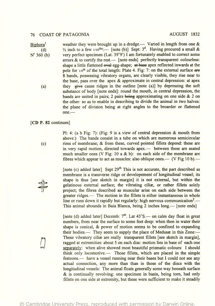 Ed amp; Darwin's Keynes 2000 Richard Charles Notes Specimen Zoology TBBqFwp