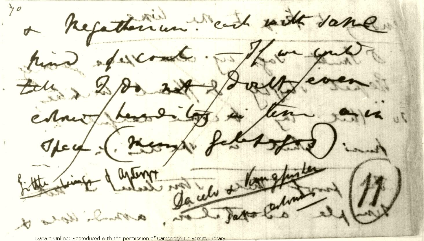 Darwin, C  R  Notebook B: [Transmutation of species (1837