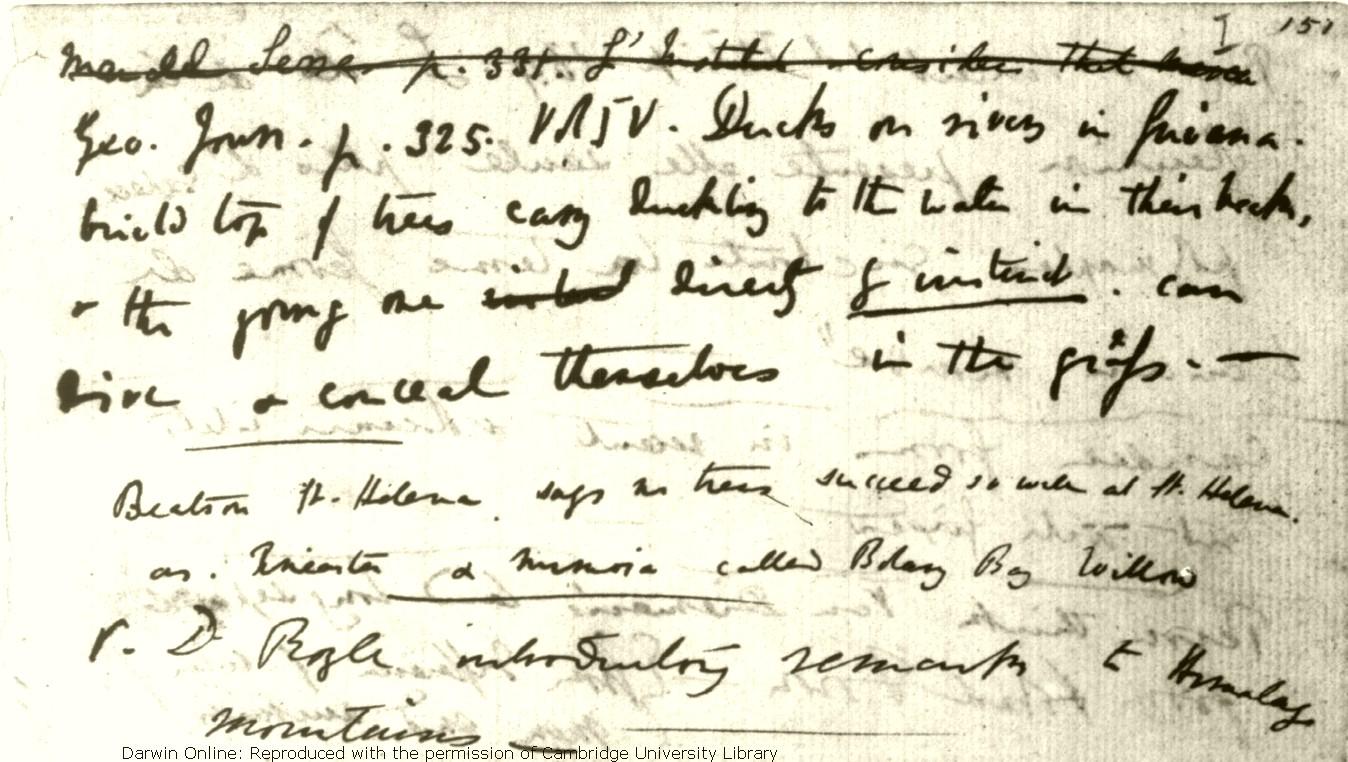 Darwin C R Notebook B Transmutation Of Species 1837