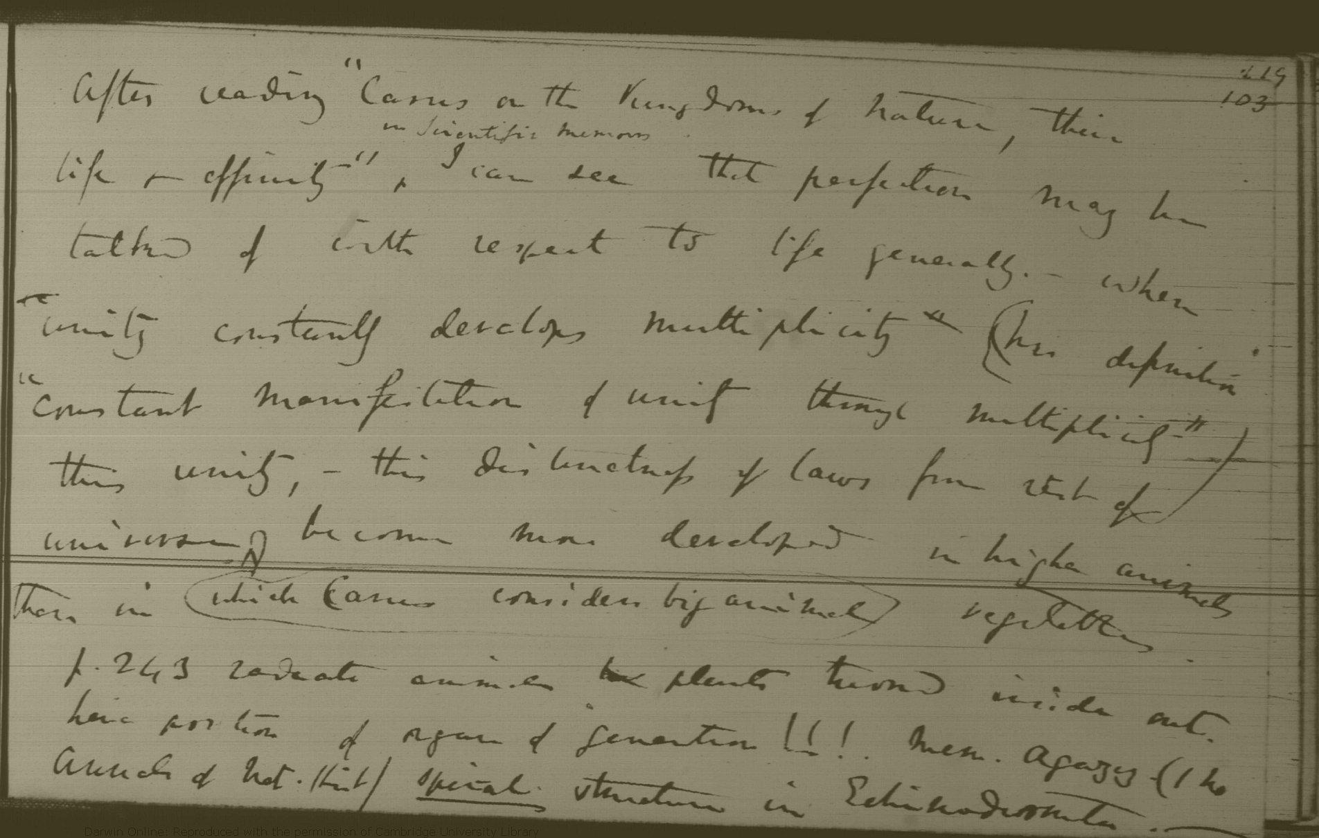 Darwin C R Notebook C Transmutation Of Species 183802 183807