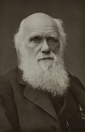 Charles Darwin (1809-1882) was the Father of  Barnacle Taxonomy. Picture taken with permission from Darwin-online