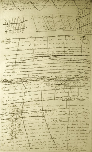 A page from the first draft of the theory of evolution (1842)