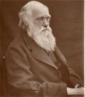 Charles Darwin 1878