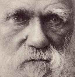 introduction to darwin online